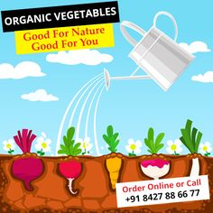 Eat #Organic_Vegetables to stay #fit & #healthy Visit: http://www.alootamatar.com  #goodfornature #goodforyou