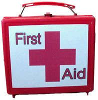 Molly Saves the Day:First Aid Safety Kit for Children Girl Scout Activities, Camping Activities, Camping Crafts, Summer Activities, Diy First Aid Kit, First Aid For Kids, Family Crafts, Crafts For Kids, Fun Crafts