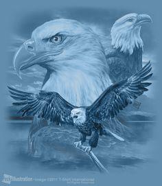 Realistic Eagle | Three Eagle Lake by joe6peck
