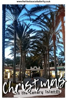Europe Winter Sun - Christmas in the Canary Islands - The Life of a Social Butterfly Christmas Getaways, Christmas Travel, Christmas Time, Holiday Travel, Best Places To Travel, Cool Places To Visit, Europe In December, Winter Holiday Destinations, Christmas Markets Europe