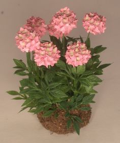 Hydrangea Pink by Judy Travis - $40.00 : Swan House Miniatures DIY, For dollhouse miniature building and finishing