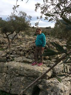 Layan in ramallah palestine