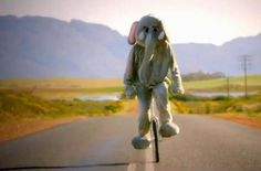 Image result for still of chris dressed as elephant on unicycle from Paradise