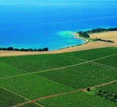 Vineyard in Istria, Croatia. Istria, formerly Histria (Latin), is the largest peninsula in the Adriatic Sea. The peninsula is located at the head of the Adriatic between the Gulf of Trieste and the Bay of Kvarner. It is shared by three countries: Croatia, Slovenia, and Italy.