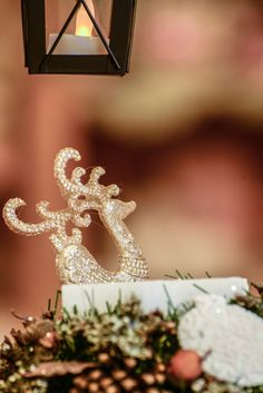 Tree Skirts, Diamond Earrings, Christmas Tree, Crown, Jewelry, Fashion, Teal Christmas Tree, Moda, Corona