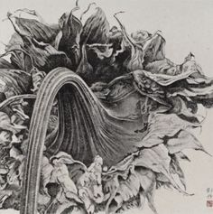 Liu Dan, The Sunflower; Ink on Paper, 75x75cm, 2007
