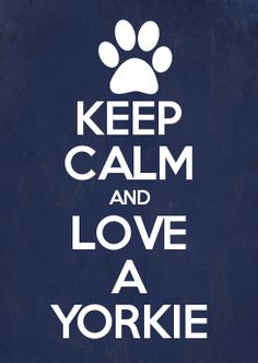 KEEP CALM AND LOVE A YORKIE