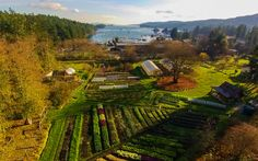 Places to eat on Salt Spring Island