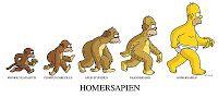 Utilizando esta imagen de referencia, deberán dibujarse ellos mismos como son ahora y retroceder en la evolución poco a poco modificando sus rasgos hasta llegar al mono.