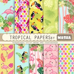 Check out this item in my Etsy shop https://www.etsy.com/listing/267612736/flamingo-papers-tropical-digital-papers