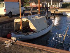 Skibslagets æresmedlemmer afprøver teltet før afgang d 3 juli til 1 uges tur i KAREN.