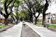 O que fazer em Mendoza, Argentina