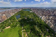 New York #centralpark #wallpaper #newyork