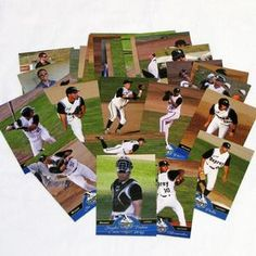 2013 Osprey Cards