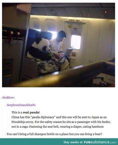 TSA, what the hell?