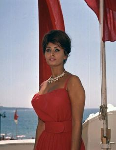 A old portrait of the italian actress Loren it´s she an of the Stars of this Films Hollywood classical time on Century of the cimena world Old Hollywood Stars, Classic Hollywood, Hollywood Actresses, Actors & Actresses, Loren Sofia, Sophia Loren Images, Italian Actress, Italian Beauty, Marlene Dietrich