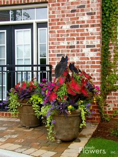 Less-Than-Perfect Life of Bliss: Pinspired: Front Porch Foliage