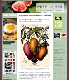 Web Design by Grey Visual for Figs With Bri food site Food Web Design, Site Design, Recipe Sites, Lemon Curd, Figs, Fruit, Grey, Gray, Website Designs