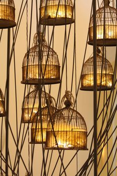 birdcage lights~cute in the garden