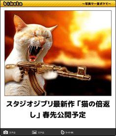 スタジオジブリ最新作 「猫の倍返し」 春先公開予定