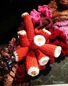 Hyperbolic Crochet and the History of the Crochet Coral Reef Project