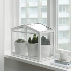 Indoor Greenhouse, Greenhouse Plans, Cheap Greenhouse, Greenhouse Wedding, Homemade Greenhouse, Underground Greenhouse, Dome Greenhouse, Portable Greenhouse, Diy Small Greenhouse
