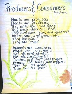Here's a nice anchor chart on producers and consumers.