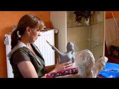Nana Workshop Pappmachee Teil 1 mit Sonja Ziemann - YouTube