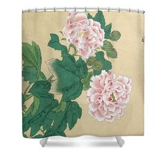 Bee and Peony Shower Curtain by Ichimiosai . This shower curtain is made from polyester fabric and includes 12 holes at the top of the curtain for simple hanging. The total dimensions of the shower curtain are wide x tall.