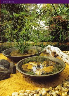 Crescent planters.../
