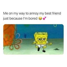 True Memes, Dankest Memes, Jokes, Hilarious Memes, My Best Friend, Best Friends, Sweet Memes, Pretty Meme, Im Bored
