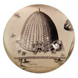John Derian Company Inc: Birds & Bees Bees Knees, Beehive, Decoupage, Decorative Plates, Birds, Antiques, Design, Antiquities, Bird