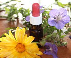 Homöopathie  Eine Lehrstunde in Naturheilkunde gefällig? =)