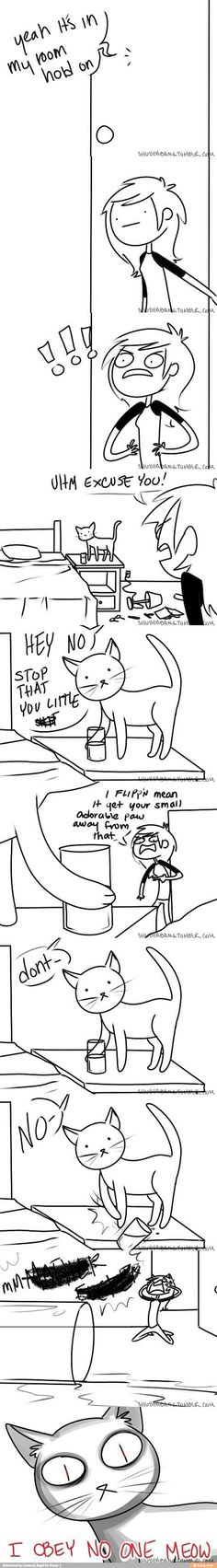 Thats how those little spawns of Satan are!! But cats are adorable so they're easy to forgive