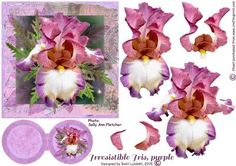 Irresistible Iris Purple on Craftsuprint designed by Bodil Lundahl - An absolutely stunning Iris, which I should love to be able to grow in my own garden. The flower has four layers, which are not too difficult to cut out, plus a double tag for your own sentiment. If you like this particular Iris, try to see cup370818_1395too