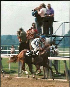 Secretariat at Belmont  1973