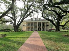 Oak Alley Plantation with corridor of live oak trees leading from the Mississippi River