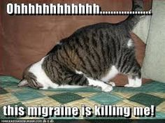 Image result for migraine humor