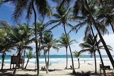 Playa El Aqua, Isla Margarita, Venezuela