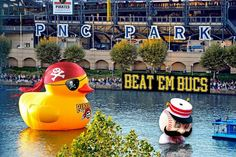 Pittsburgh duck on the Allegheny