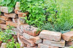 If you'd like to start growing your own herbs and vegetables, why not try a raised garden bed? Here are 3 Ways to Build a Raised Garden Bed. Brick Garden Edging, Garden Borders, Building A Raised Garden, Raised Garden Beds, Raised Beds, Brick Planter, Old Bricks, Outdoor Landscaping, Garden Spaces