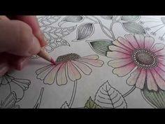Secret Garden, How to color a flower - Secret Garden Coloring Book, Secret Garden Book, Colored Pencil Artwork, Coloured Pencils, Color Pencil Art, Colored Pencil Tutorial, Colored Pencil Techniques, Zentangle, Pencil Art