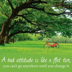 Your attitude determines your altitude :)