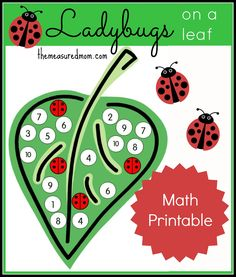 Number Recognition Activity: Ladybugs on a Leaf (from The Measured Mom)