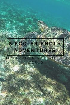 On Earth Day, we recommit to being more environmentally friendly, exploring sustainable tourism, and supporting responsible tourism efforts. Here are 8 environmentally friendly adventures you can feel good about. #ecofriendly #ecotourism #sustainable #sustainability #sustainabletourism #greentourism #responsibletourism #samariagorge #borneo #philippines #doolinwalk #suitcasesix #femaletravel #earthday #motherearth #planetearth #wanderlust #travel #outdooradventures #animaladventures