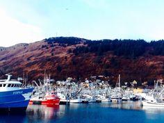 St. Paul Harbor, Kodiak Alaska 2016 Kodiak Alaska, River, Island, Outdoor, Outdoors, Islands, Outdoor Games, The Great Outdoors, Rivers