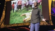 What were your chores when you were 9 years old? Prepare to feel wimpy. Richard Turere of Kenya watched over the familys livestock outside of Nairobi, a task which included keeping the animals safe from roaming lions. But while he slept, the hungry lions would hunt. I grew up hating lions very much, he says. Richard, however, didnt want them killed. So, realizing that the lions were afraid of moving lights, he invented an automated system of moving lights for the farm. The nighttime attacks