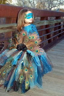 Homemade Peacock Costume, so cool for kids but I feel could be equally awesome totally revamped for an adult!
