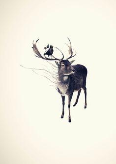 Long Deer by Kari Nystad, via Behance