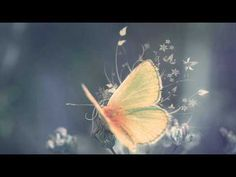 Mike Rowland - Breath (+afspeellijst)